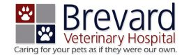 Brevard Veterinary Hospital